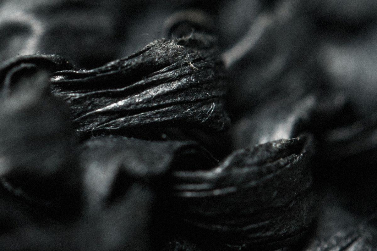minoar-macro-details-closeups-