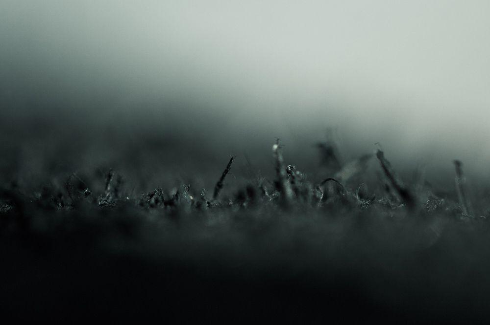 minoar-macro-details-closeups-2